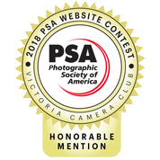 Honorable Mention for Web Design (PSA)